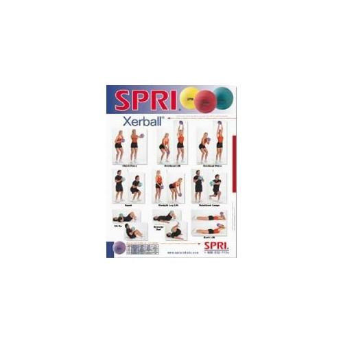 Xerball Medicine Ball Exercise Wall Chart