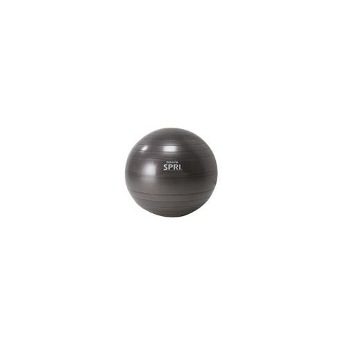 Xercise Ball - Professional Plus (55cm Slate)