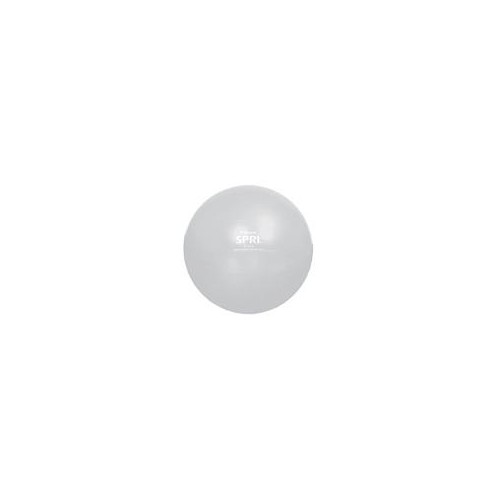 Xercise Ball - Professional Plus (75cm Silver)