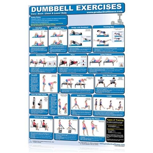 Dumbbell Exercises - Lower Body/Core/Chest and Back  (Poster)