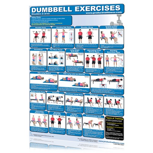 Dumbbell Exercises - Shoulders & Arms (Poster)
